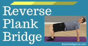 reverse plank bridge posture exercise