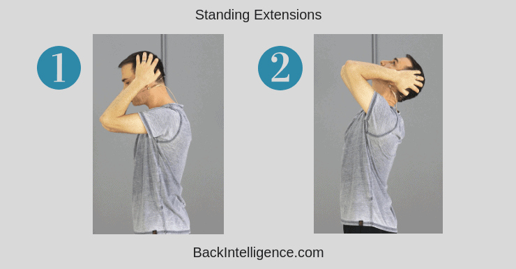 Standing Thoracic Extensions