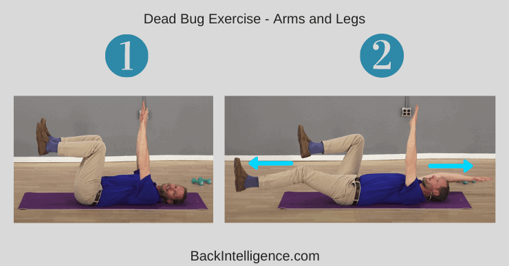 Dead Bug Exercise - Arms and Legs