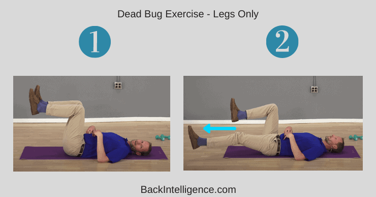 Dead Bug Exercise - Legs Only