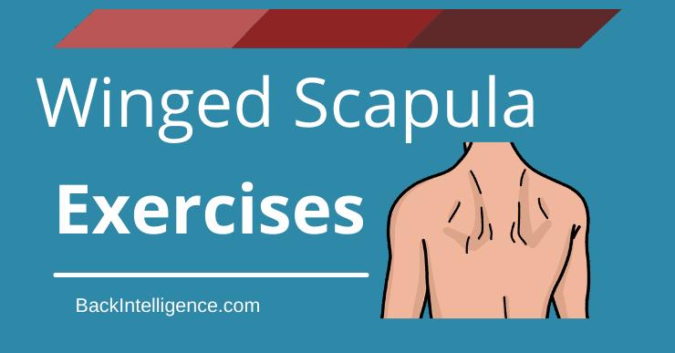 Winged Scapula Exercises
